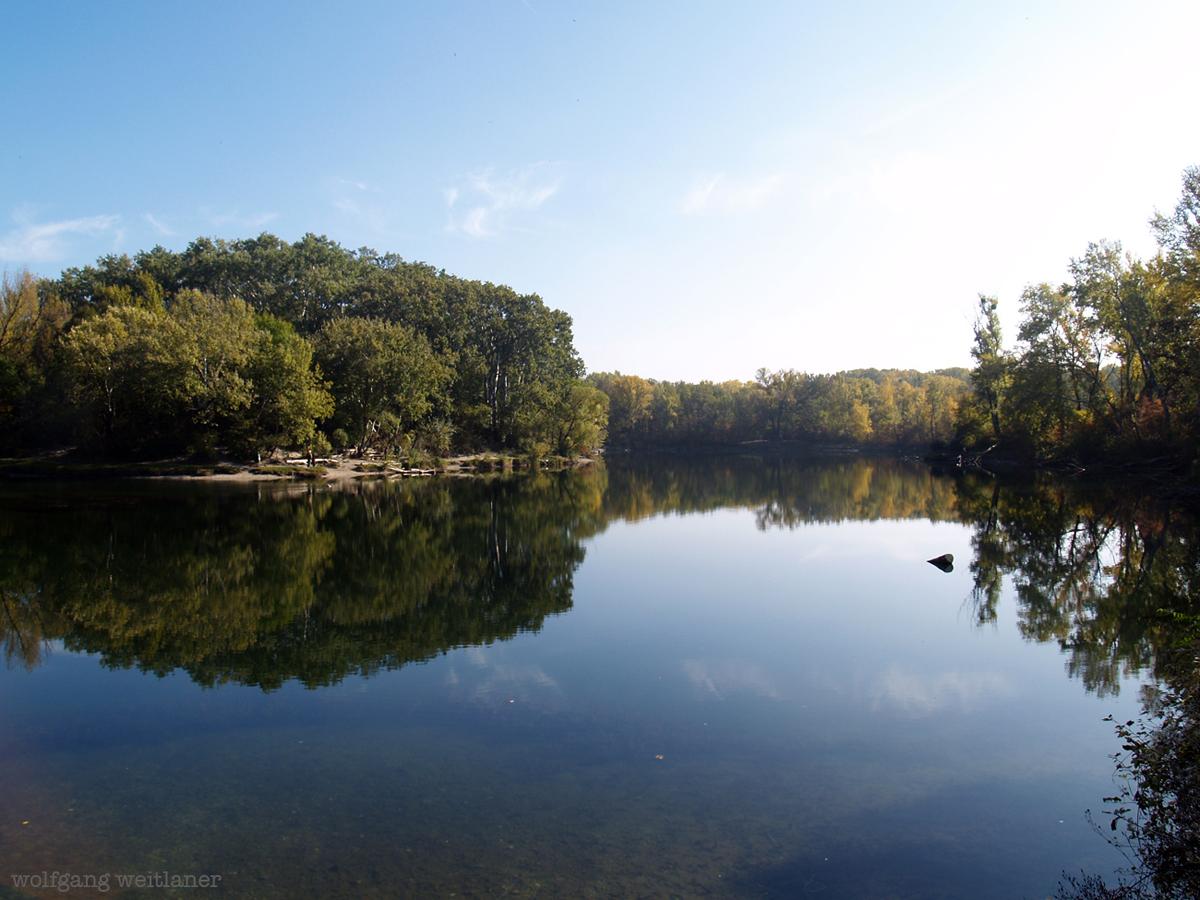 Lobau Nationalpark Donau Auen Wien