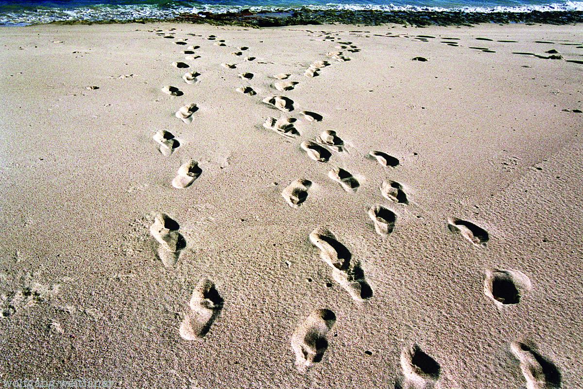Seychellen - Spuren, Traces