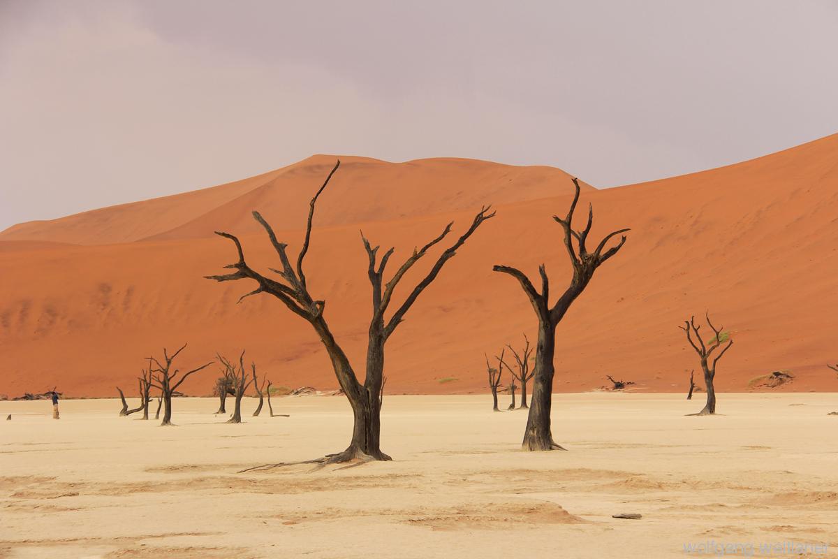 deadsvlei - namibia