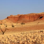 Namib-dune2