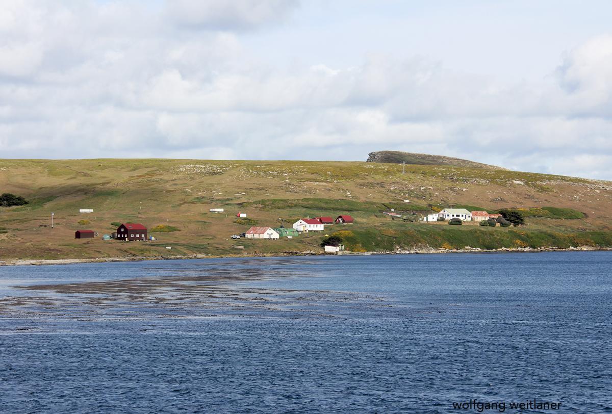 Hallo Falklandinseln, New Island, Falkland Inseln