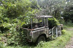 Natur frisst Autos 2, Dominica, Karibik