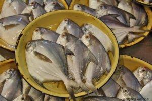 Pomfret-Fische, Chinatown-Markt, Singapur
