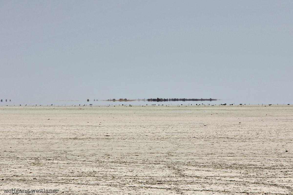 Etosch-Pfanne, Namibia