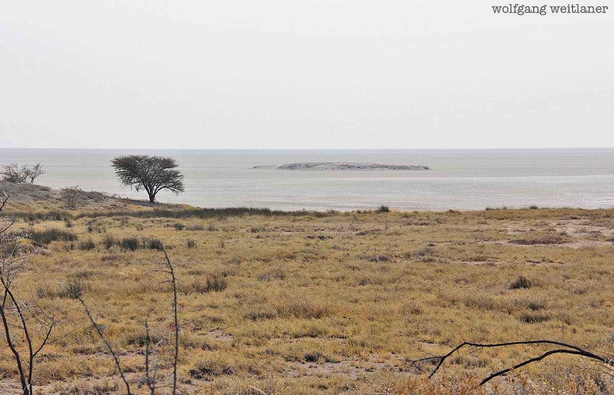 Etoscha Namibia