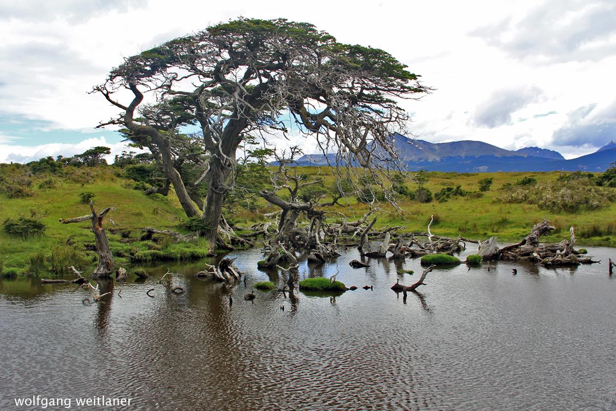 Tierra del Fuego, Feuerland