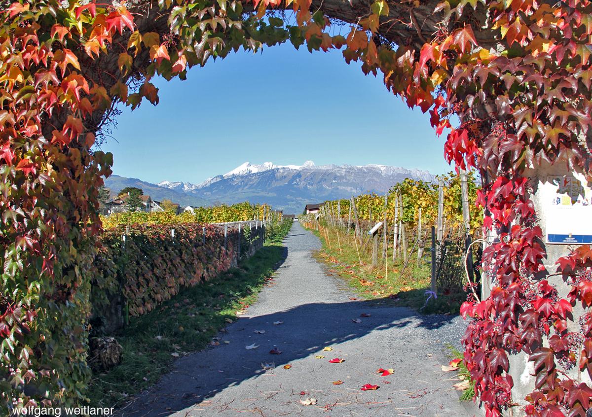 Herbstliches Vaduz, Fürstentum Liechtenstein