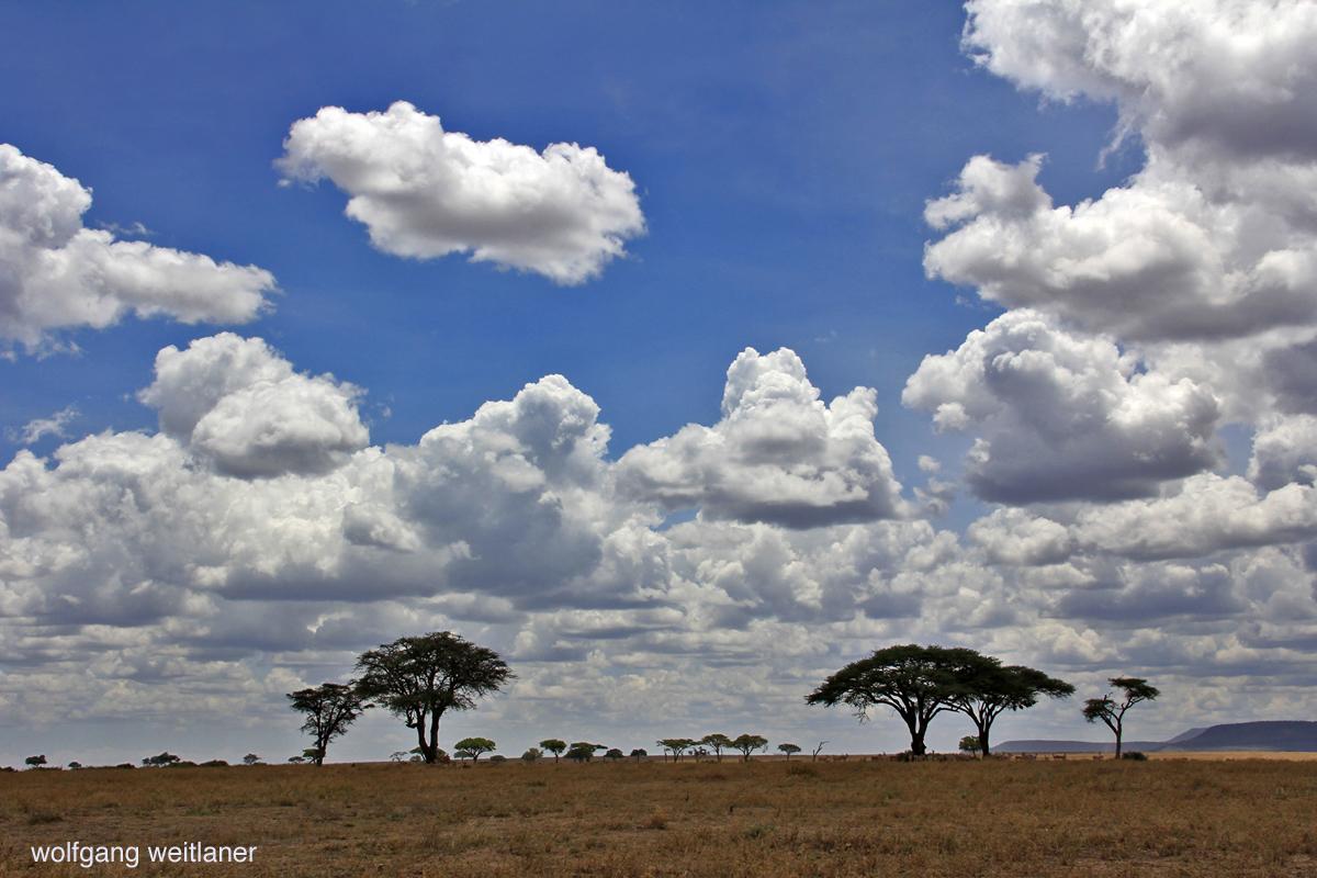Himmel über der Serengeti
