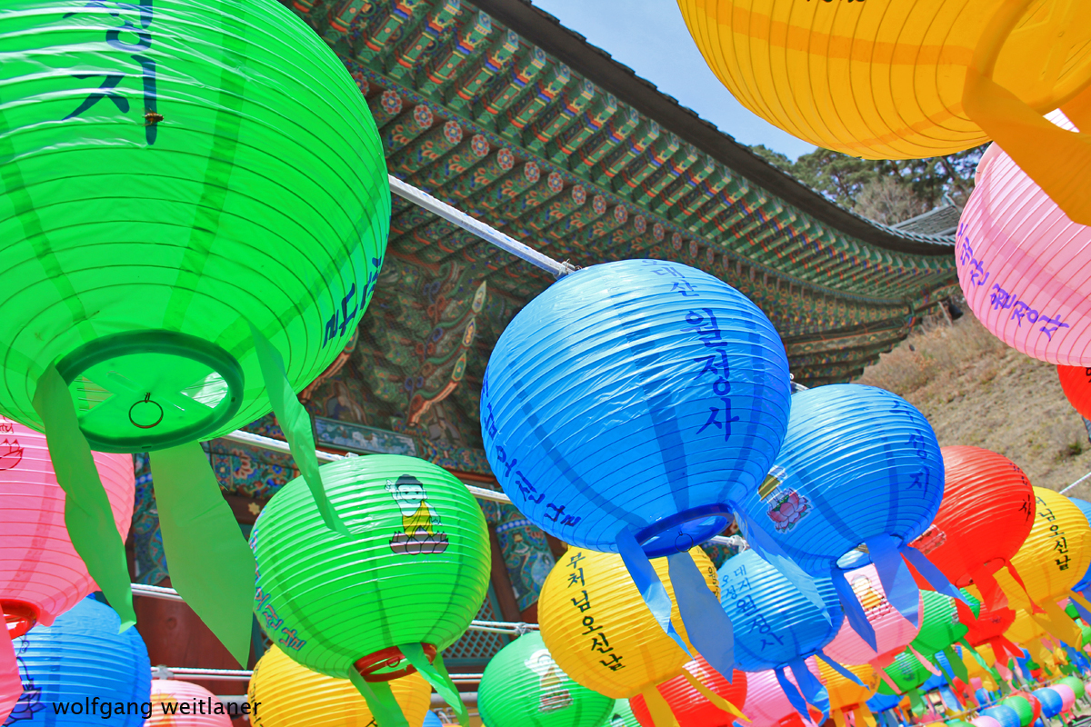 Lampions Korea
