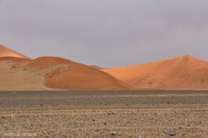 Einsamkeit in der Wüste Namib, bei Sossusvlei, Namibia