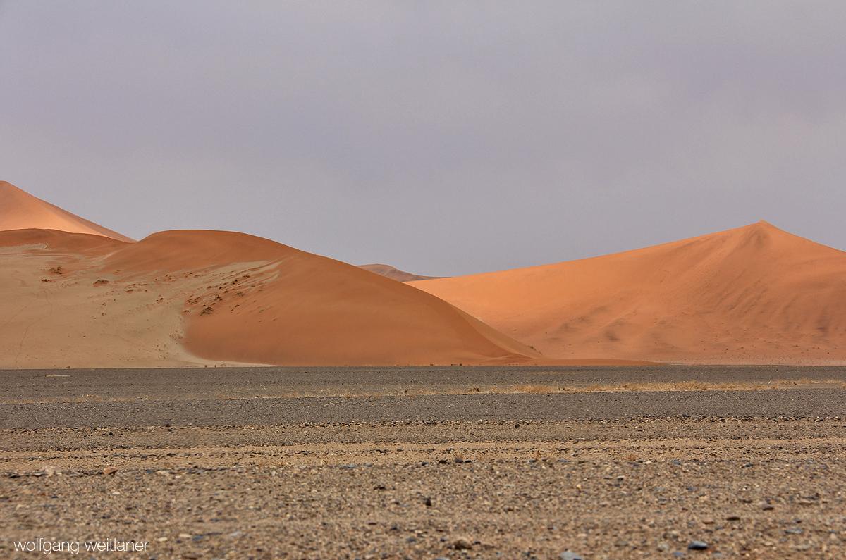 Dünen in der Wüste Namib