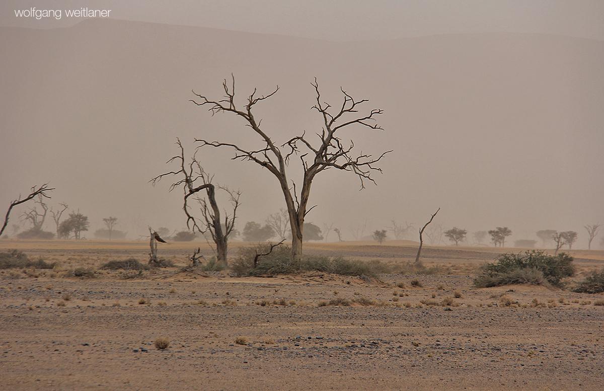 Sandsturm Wüste Namib