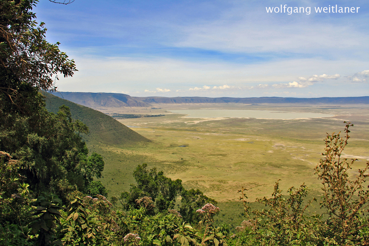 Ngorongoro Krater - Conservation Area