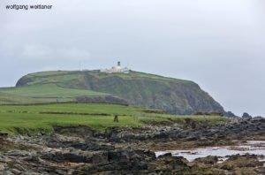 Sumburgh Head, Shetland Inseln, Großbritannien